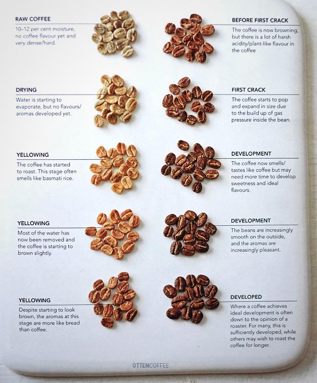 """Fase-fase pada coffee roasting. Diambil dari """"The World Atlas of Coffee"""" karangan James Hoffmann."""