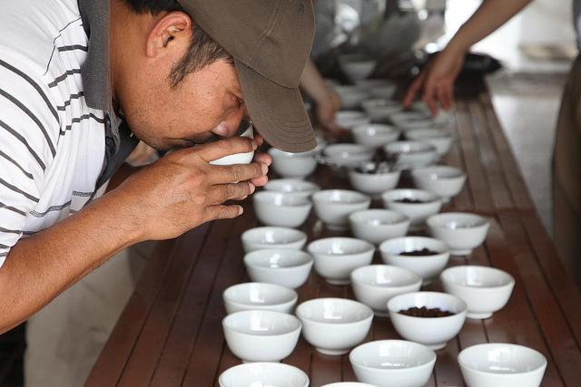 Cupping kopi Gayo.