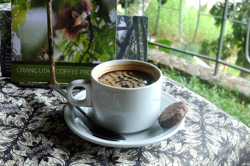 Americano dari biji Orangutan Coffee.