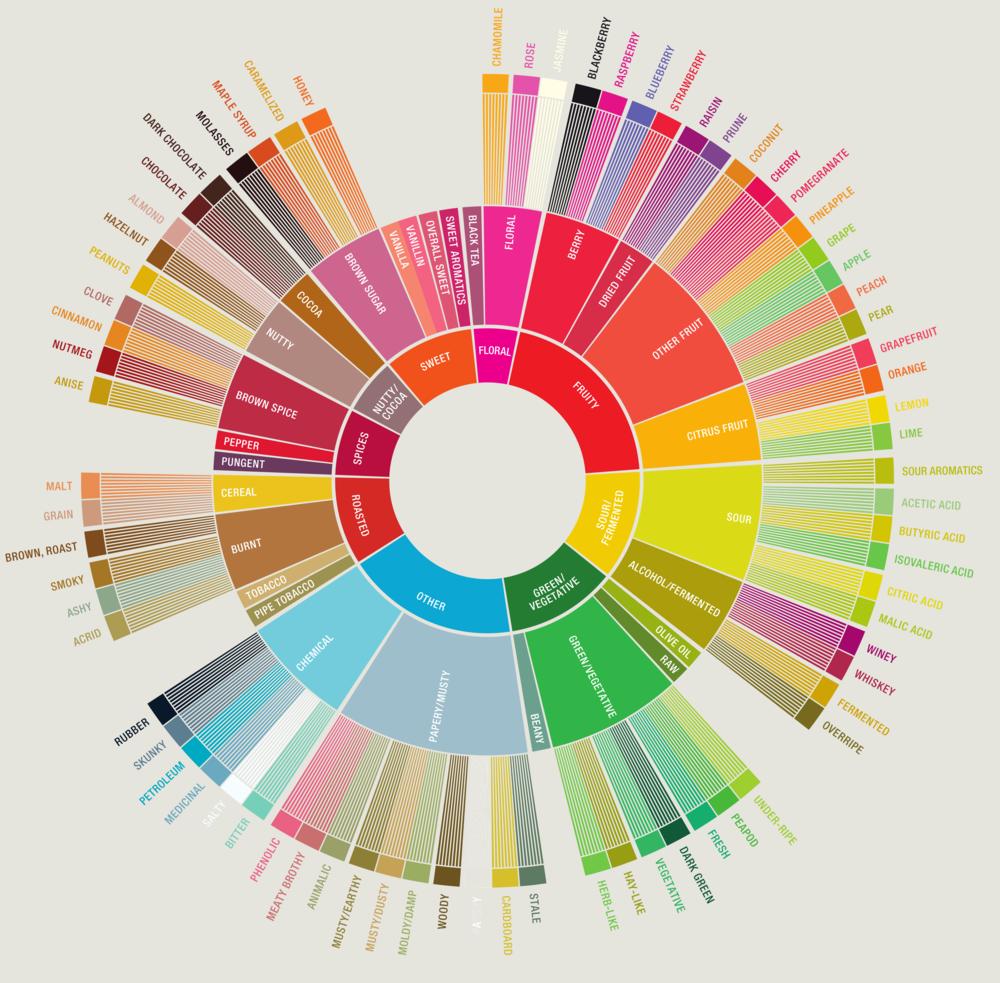 Flavor wheel yang telah didesain ulang, semakin lengkap.